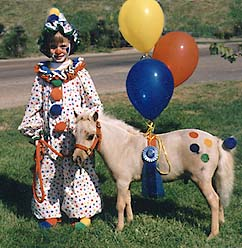 Send someone a virtual gift horse send a gift horse photo of child and miniature horse ready to win the costume negle Images